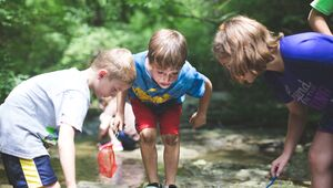 Children explore the stream at day camp at Glen Helen Nature Preserve in Yellow Springs, OH.
