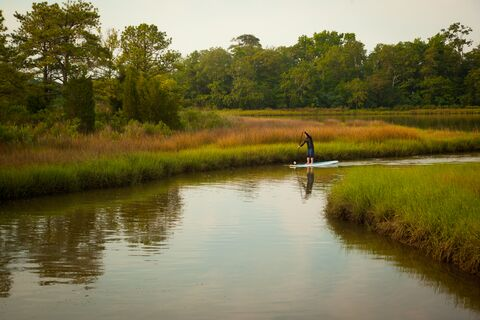 Exploring the marshes of Ayers Creek in Maryland