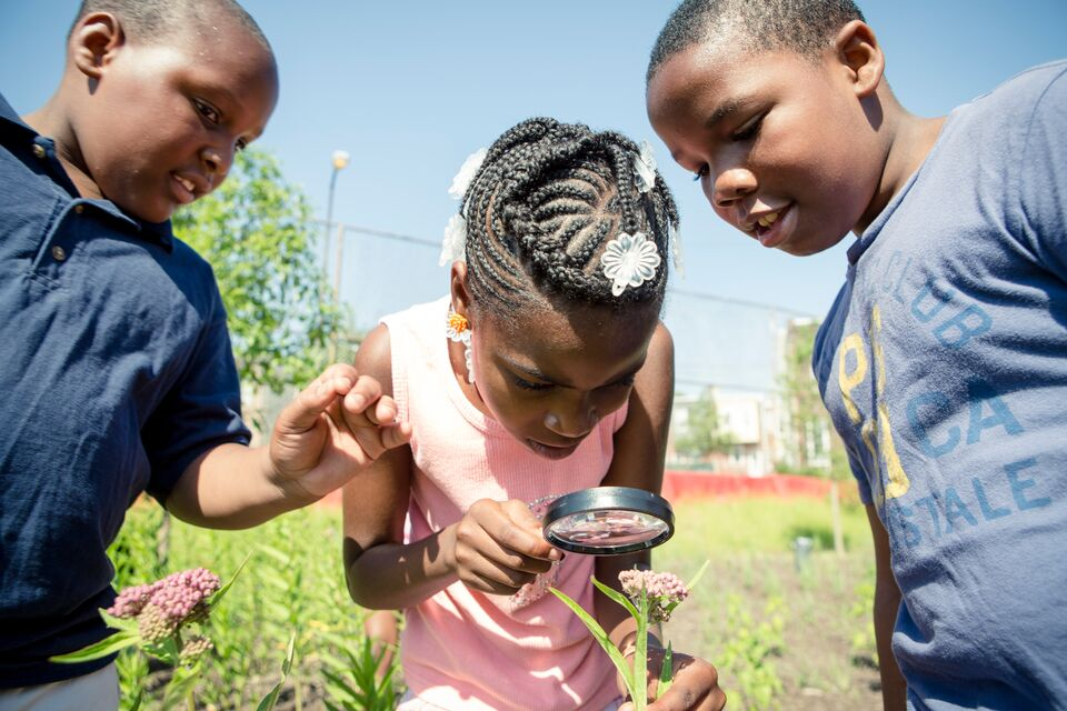 Three children examine a plant with a magnifying glass.
