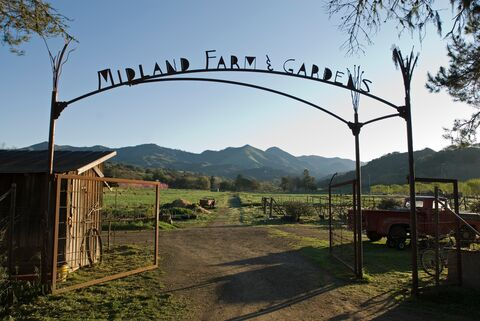 Early morning at the Midland School Farm and Gardens gate