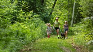Three girls walk a dog on a trail near Page Pond in Meredith, New Hampshire.