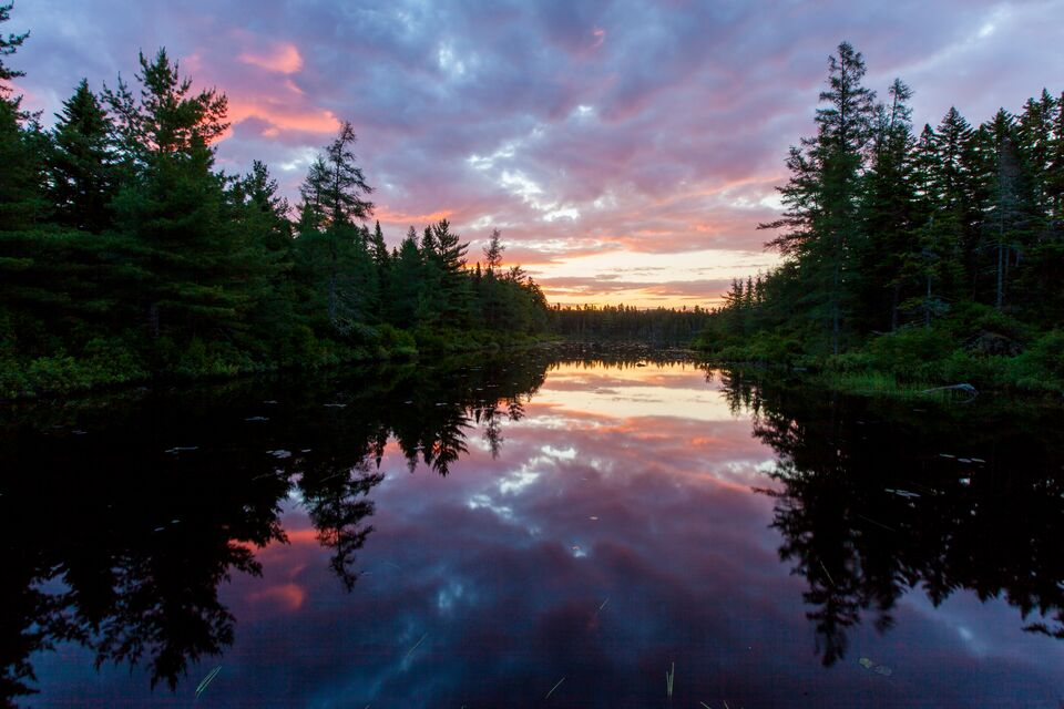 Sunrise on Little Berry Pond at Cold Stream watershed