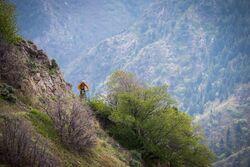 Bonneville Shoreline Trail project near Salt Lake City, UT