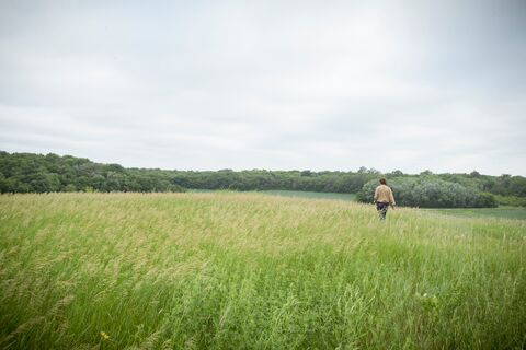Walking in The Trust for Public Land's Koester Prairie., 2014, MN, Cannon Rivers Koester Prairie