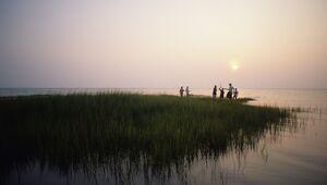 Exploring the edge of a salt marsh on Chesapeake Bay.