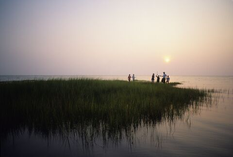 Exploring the edge of a salt marsh on Chesapeake Bay.